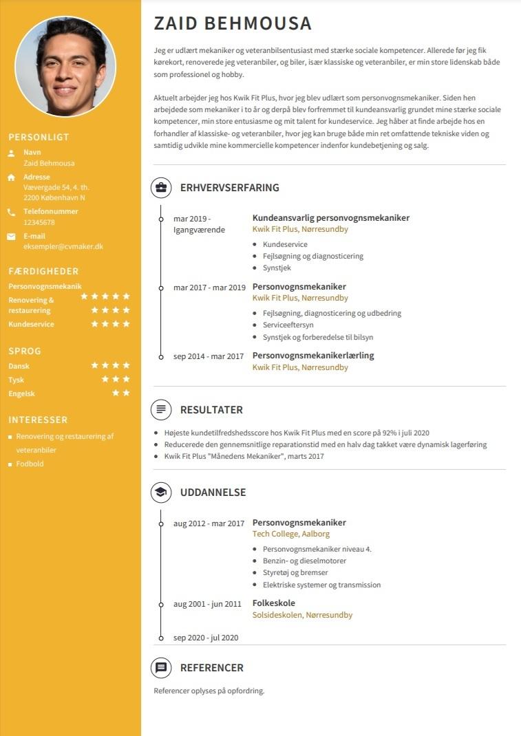 CV eksempel med resultater